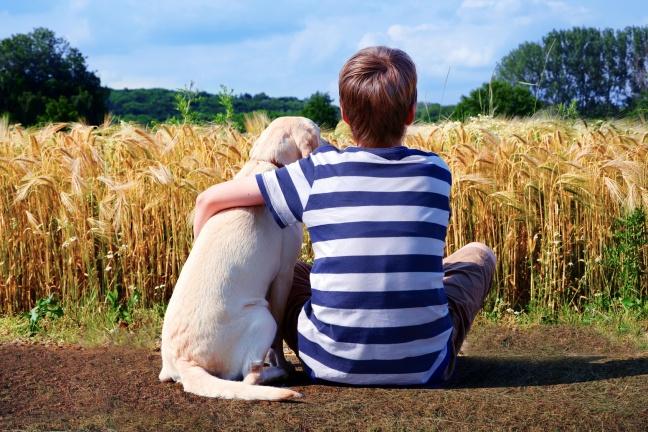 Junge mit Labrador Retriever vor Getreidefeld